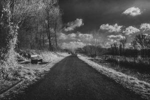 bw-road-LQ.jpg